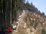 高水山トレラン尾根線通過