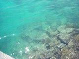 石垣WC海