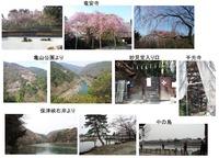 竜安寺・嵐山
