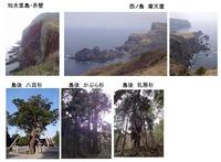 赤壁・巨杉