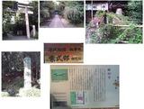 梨の木・魯山寺