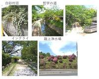 yosidayama2