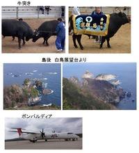 牛突き・白鳥海岸