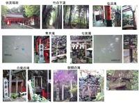 竹の下道1
