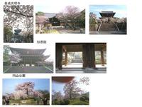 光明寺・知恩院・円山公園