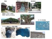3-okinoerabu1