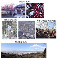 紅梅・清水山