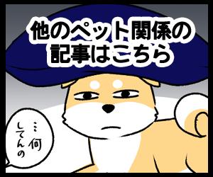 tag_pet