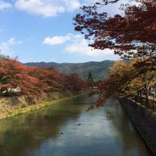 201411京都3