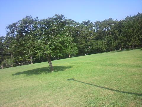 高師緑地公園