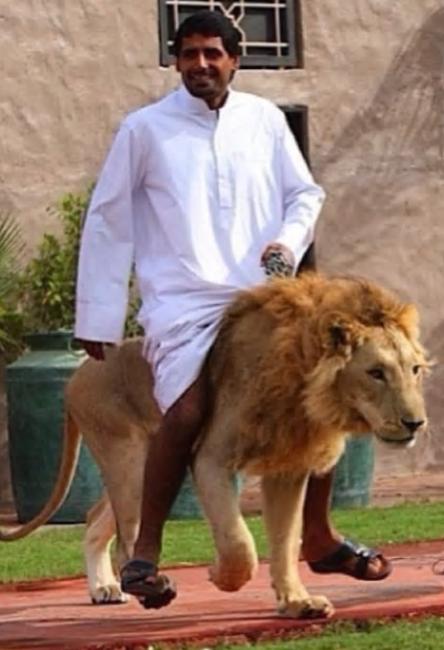 アラブの金持ち