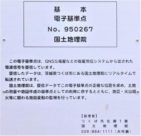 DSCF2969