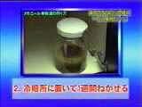 カモミール液1