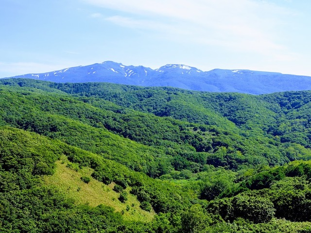 写真3 積丹岳全景