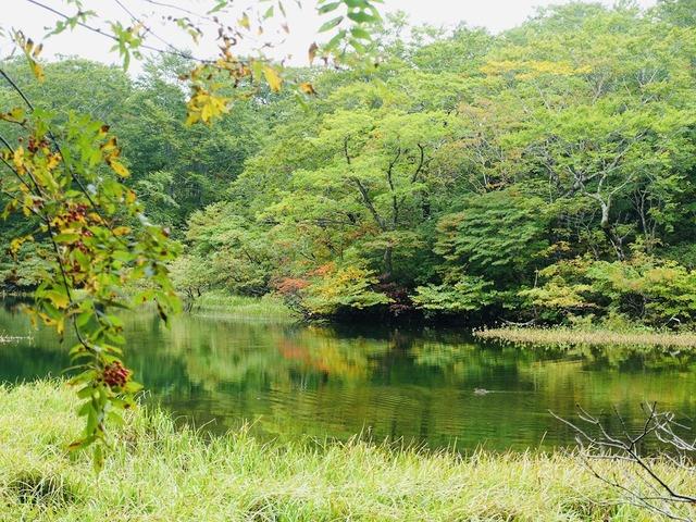 写真13_中沼など所々小さな湖沼が点在