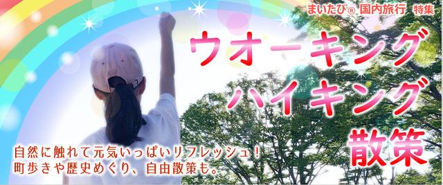 tokusyu24