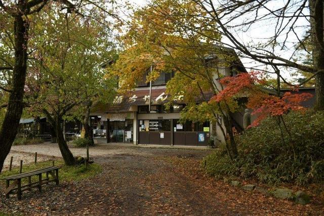 紅葉の中の福ちゃん荘。こちらは食堂側の入り口