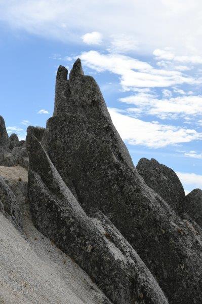かわいらしいイルカ岩