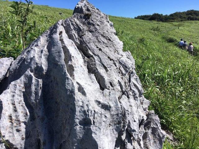 アートな四国カルストの岩