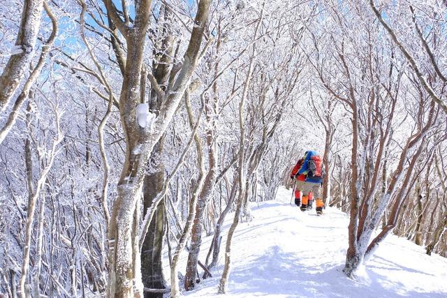 No.16「雪中登山」