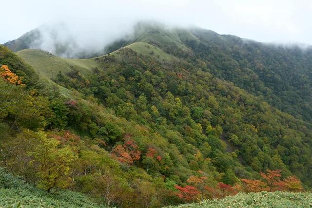 紅葉は始まったばかり。次郎笈は霧の中に。