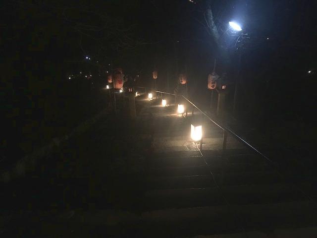 14.燈籠に照らされた風情ある景色