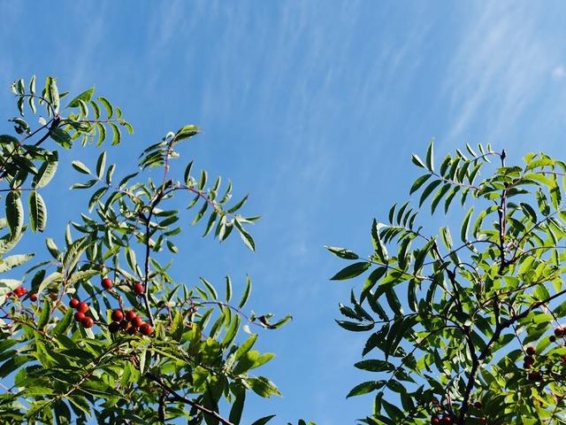 写真01_カラッと気持ちの良い秋の空気。