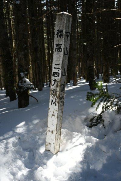 中山の山頂は、山頂というよりも登山道の一部のようだった