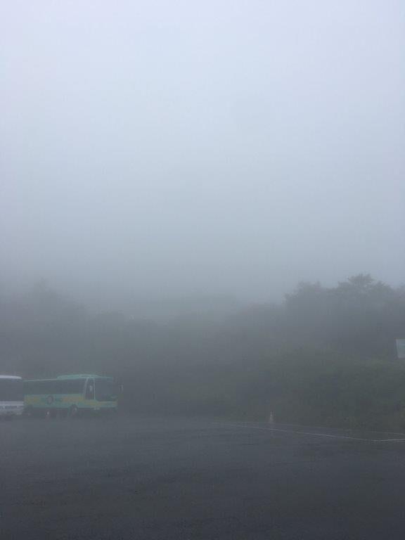 濃霧のいわかがみ平