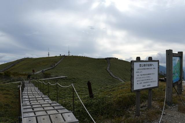 剣山山頂。笹原が広がる