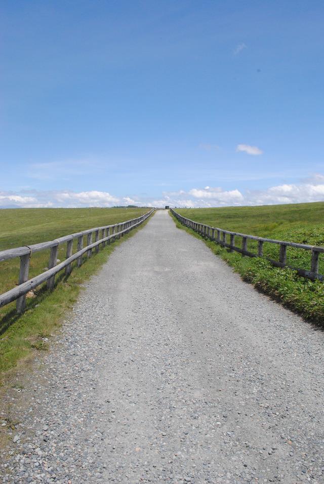 ここは北海道ではなく、長野県です。美ケ原の広さが分かる
