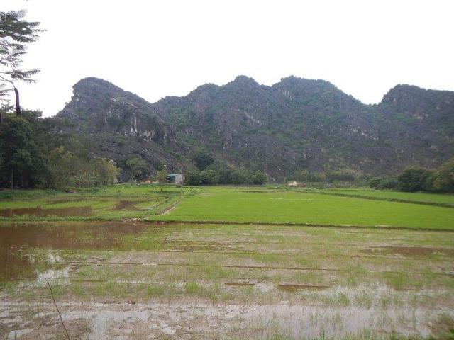 ベトナムの原風景