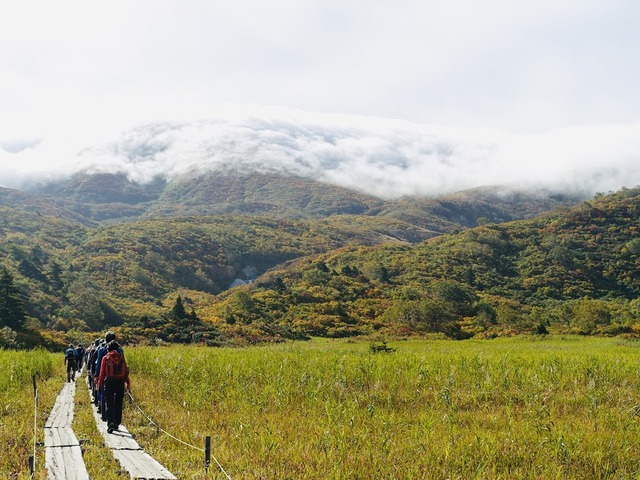 写真03_名残ケ原のきれいな木道歩き
