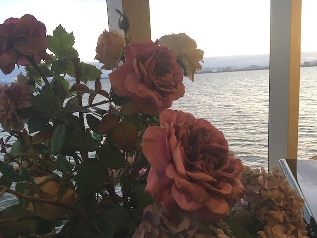 22.船内にはきれいなお花も