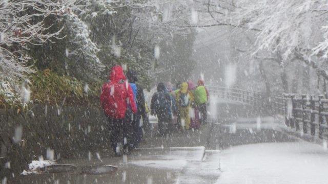 降りしきる雪の中を下山する
