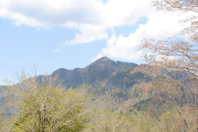 和佐又山山頂から見る大普賢岳
