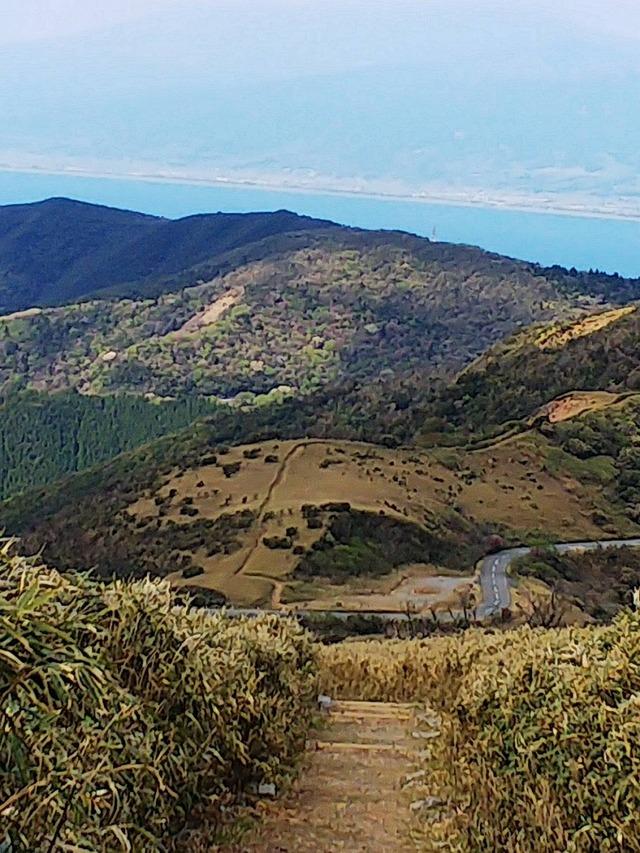 ⑱気持ちの良い草原(達磨山からの下り)