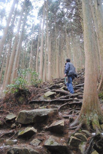 急傾斜地をゆっくり登る