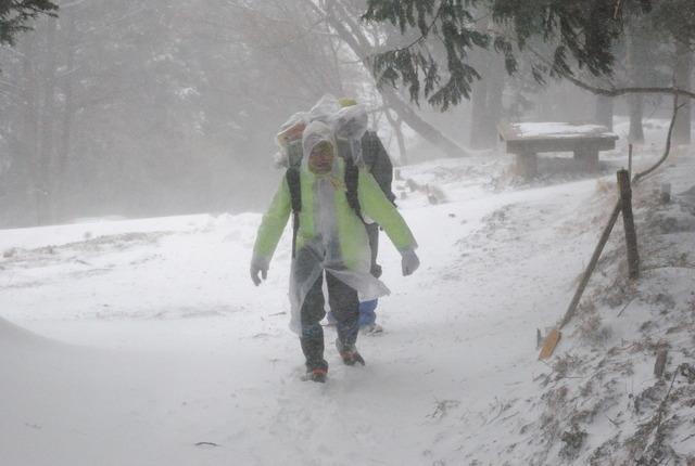 2014年2月8日、暴風雪の大倉尾根を歩く畠山さん