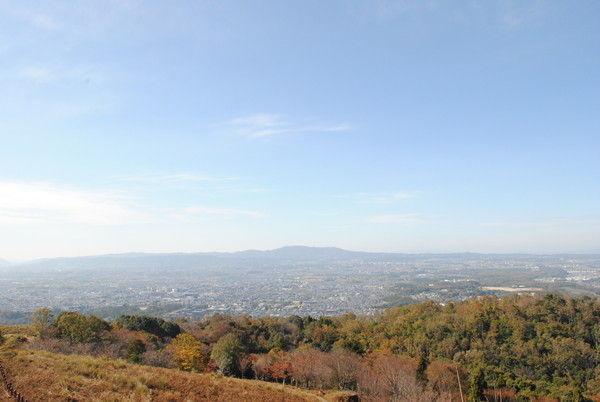 遠くに生駒山を望む