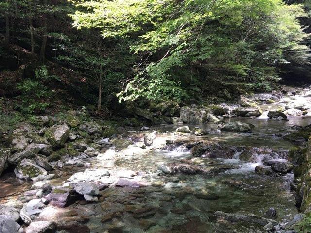 安居溪谷を歩きます