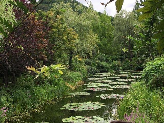 北川村「モネの庭」マルモッタン2