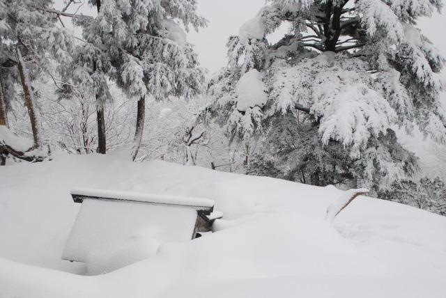 権現山からホッケ山へ向かう稜線で、社も雪に埋まっていた
