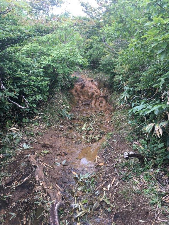 雨の影響で道が悪い東栗駒山コース
