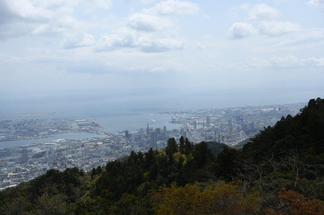 掬星台から神戸の街を望む