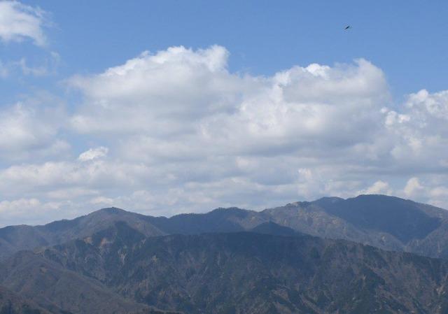 雄大な丹沢山地。山頂に山小屋が見えるのが塔ノ岳(正面左)
