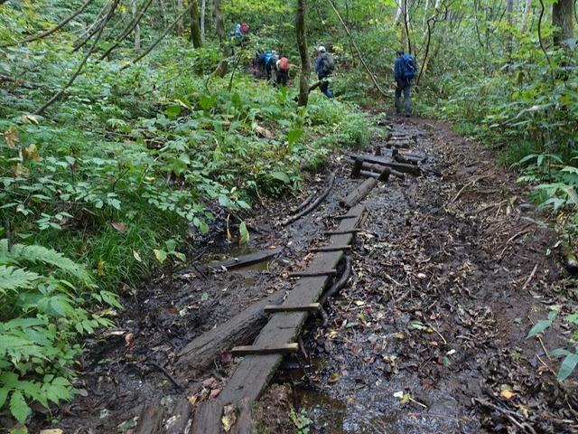 写真16_よく滑る木道、気をつけて!