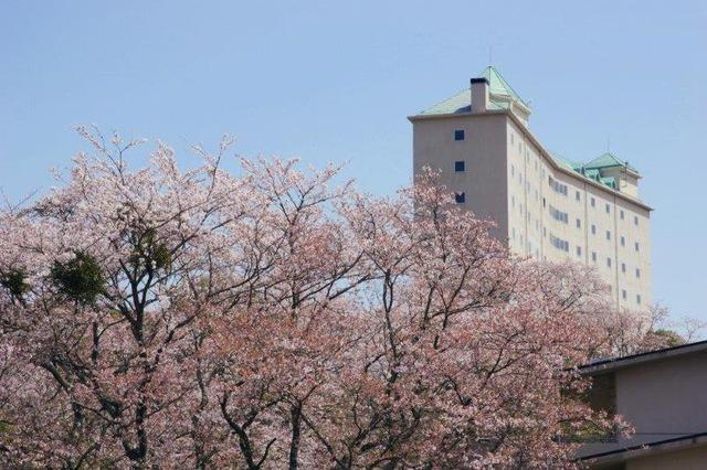 桜並木とかんぽの宿伊野