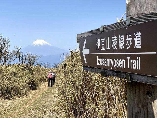 ①伊豆山稜線歩道