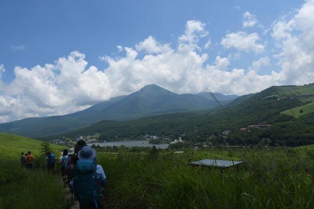 DSC_7295正面の蓼科山を見ながら下山する。手前は白樺湖